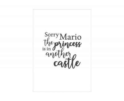Cadre SORRY MARIO
